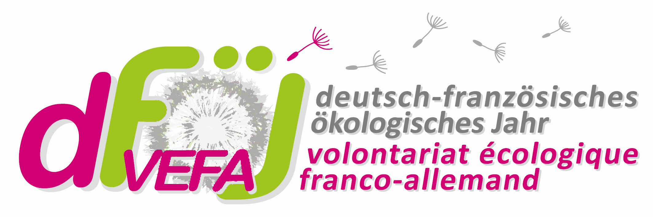 Logo DFÖJ